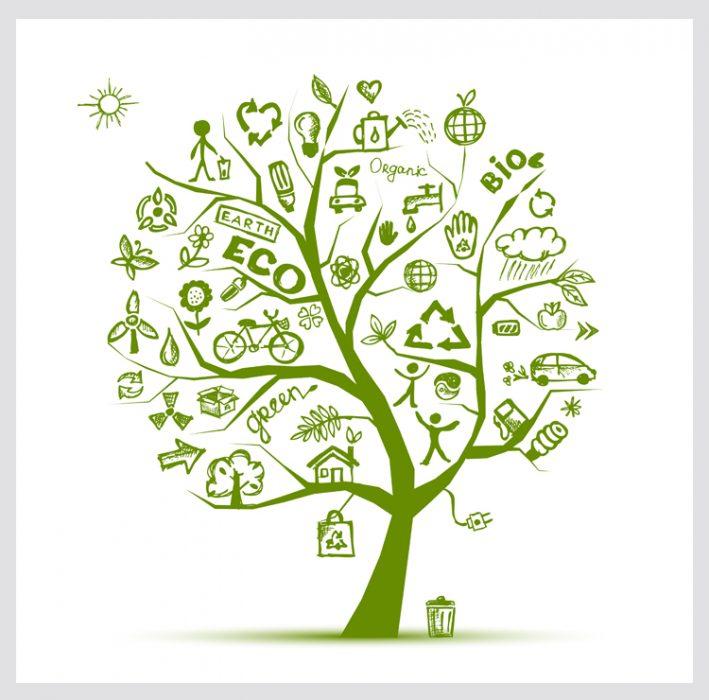 Rattan and Teak and Environmental Responsibility