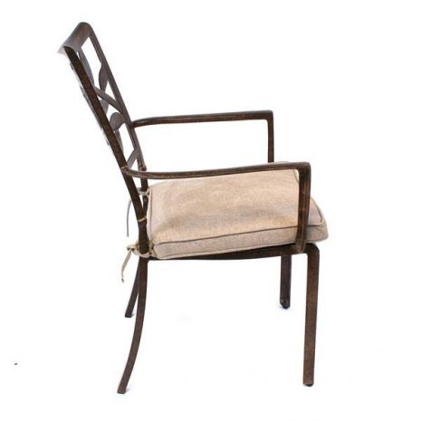 Cinnamon Leaf Aluminium Dining Chair