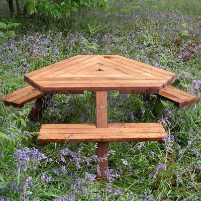 Triangular Picnic Table
