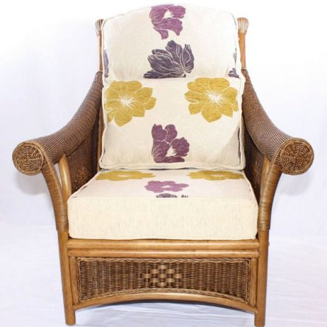 Brown Wicker Cane Conservatory Armchair Set front