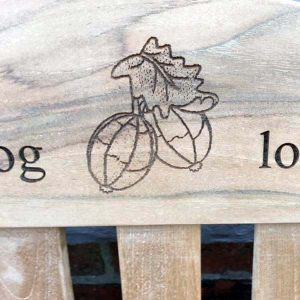 Bench Laser Image Engraving - gooseberries