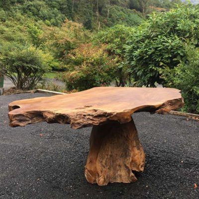 Raja 80cm Teak Root Coffee Table – Mushroom Shaped – Single Leg – 45cm Tall