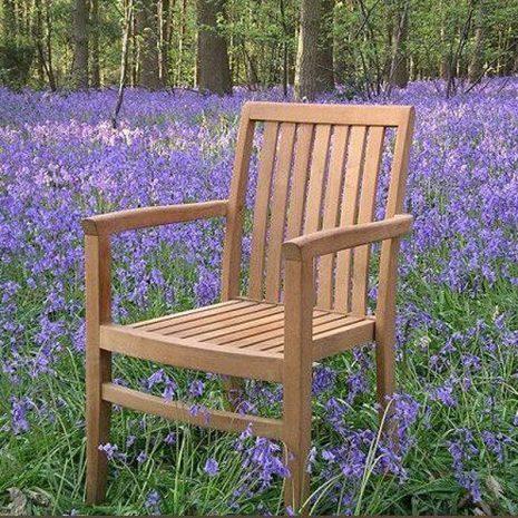 Hamilton Sustainable Teak Stacking Garden Armchair
