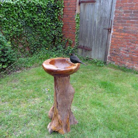 PJ_MAK_MJ381 Reclaimed Teak Root Bird Bath - Attract the birds