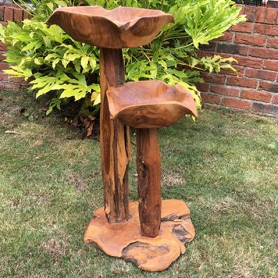 Teak Root Double Bird Bath Feeding station