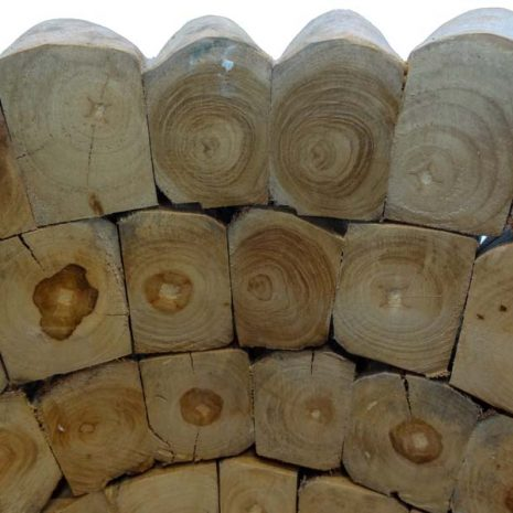 Large Round Teak Root Garden Planter Interior of rim