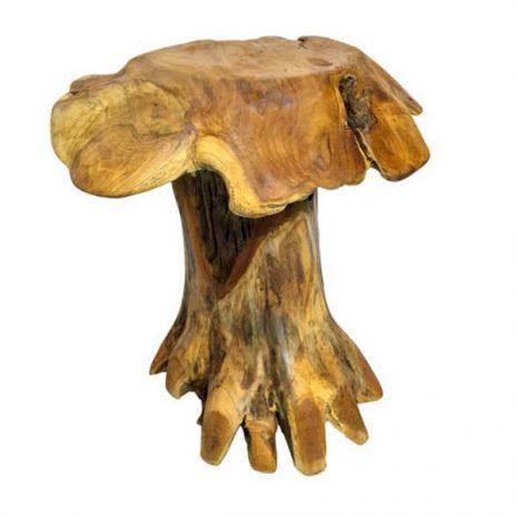 Malang Tree Root Mushroom Stool