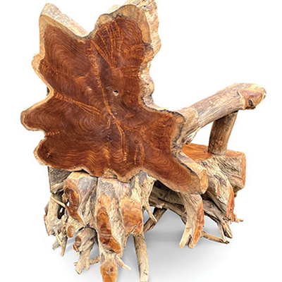 Root Spider Chair Back View