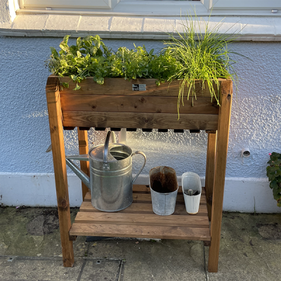 RSPB Herb planter with herbs